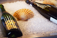 A bottle of champagne Andre Clouet on ice and a clam mussel shell Stockholm, Sweden, Sverige, Europe