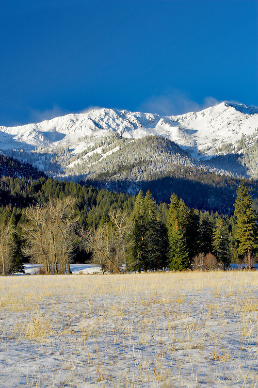 Snowy pasture and Elkhorn Range. Blue Mountains. Oregon