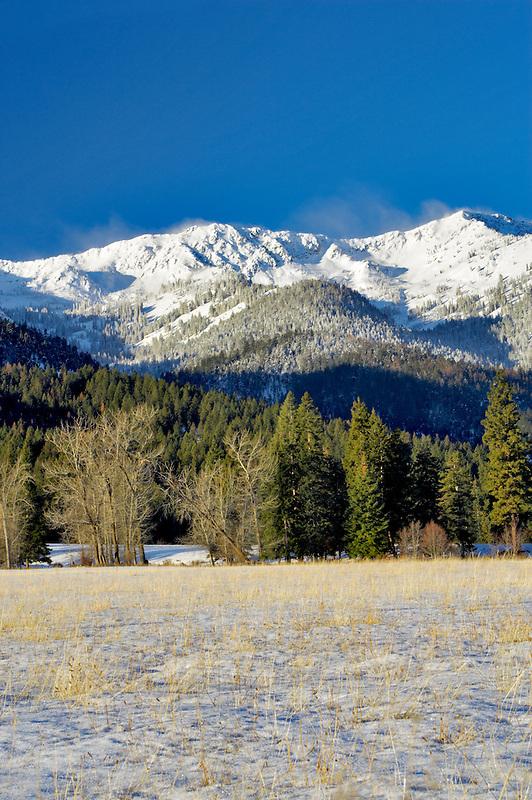Snowy pasture and Elkhorn Range. Blue Mountains. Oregon