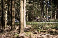the breakaway group<br /> <br /> 60th Grand Prix de Wallonie 2019<br /> 1 day race from Blegny to Citadelle de Namur (BEL / 206km)<br /> <br /> ©kramon