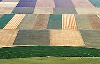 Farmland eastern Colorado. Sept 2014