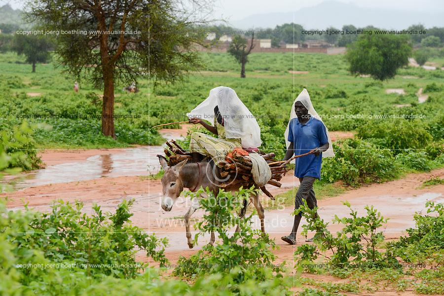 CHAD, Goz Beida, refugee camp Djabal for refugees from Darfur, Sudan, man and woman transport firewoods on donkey to the camp / TSCHAD, Goz Beida, Fluechtlingslager Djabal fuer Fluechtlinge aus Darfur, Sudan, Transport von Feuerholz auf Esel