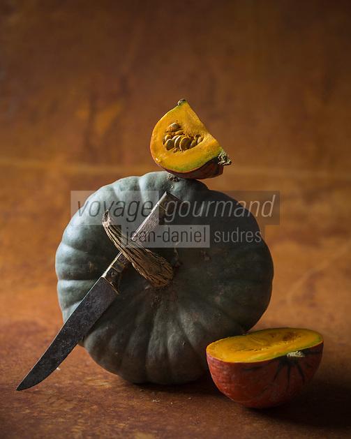 Gastronomie: Courges: Queensland blue et Potimarron // Gastronomy:  Curcubita:  Queensland blue and Red kuri squash