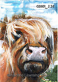Simon, REALISTIC ANIMALS, REALISTISCHE TIERE, ANIMALES REALISTICOS, innovative, paintings+++++A_AidanS_Iggy,GBWR136,#a#, EVERYDAY ,cow,bull