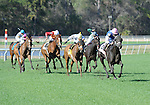 10 March 13: Phola (no. 8), ridden by Ramon Dominguez and trained by Todd Pletcher, wins the 12th running of the grade 3 Hillsborough Stakes for fillies and mares three years old and upward at Tampa Bay Downs in Tampa, Florida.