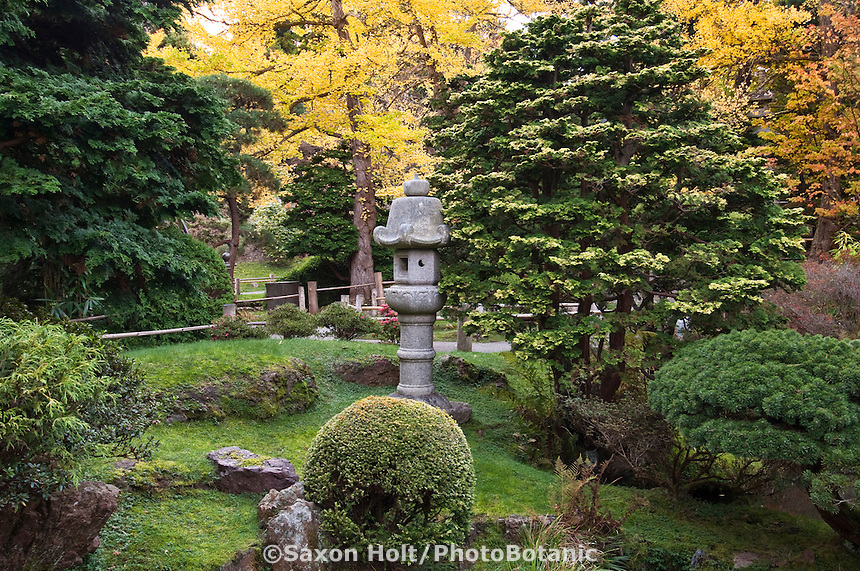 Japanese Tea Garden, Golden Gate Park, San Francisco. Stone lantern and evergreens.