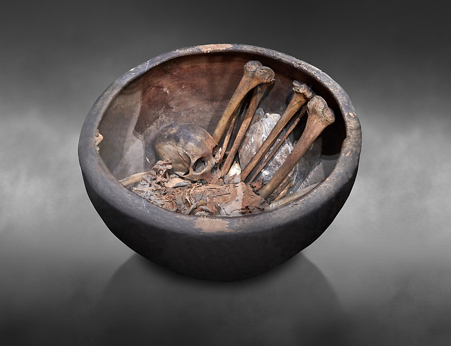 """Ancient Egyptian Protodynatic burial vessel with skeleton, Circa 3000 BC. Egyptian Museum, Turin. Grey background.<br /> <br /> With the begining of the sop called """"Protodynastic"""" period coffins began to be used for burials. The wealthy had wood coffins which were expensive as trees are rare in Egypt. Pooer people were buried in baskets or clay coffins."""