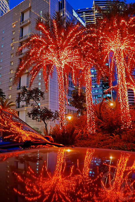 Christmas lights in the Rockwell area,Makati, Manila Philippines