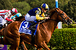 SARATOGA SPRINGS, NEW YORK - AUG 26:  Sadler's Joy #3, ridden by Julien Leparoux , wins the Sword Dancer at  Saratoga Race Course on August 26, 2017 in Saratoga Springs, New York.(Photo by Sue Kawczynski/Eclipse Sportswire/Getty Images)
