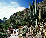Spanien, Kanarische Inseln, Gran Canaria, im Palmitos Park | Spain, Canary Island, Gran Canaria, at Palmitos Park