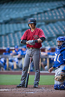 Arizona Diamondbacks catcher Andy Yerzy (27) at bat during an Instructional League game against the Kansas City Royals at Chase Field on October 14, 2017 in Phoenix, Arizona. (Zachary Lucy/Four Seam Images)