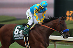 April 11, 2015: American Pharoah with jockey Victor Espinoza aboard looking back after crossing the finish line in the Arkansas Derby at Oaklawn Park in Hot Springs, AR. Justin Manning/ESW/CSM