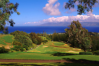 Golf players in the distance at Kapalua, Maui, Hawaii