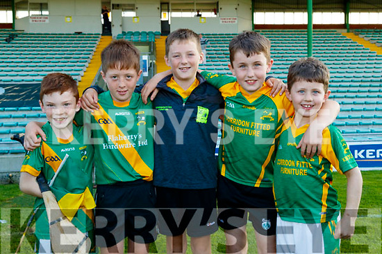 Shane O'Sullivan, Seanie Feehan, Jack Corridan with Tadgh and Darragh Diggin, pictured at the Senior Hurling final at Austin Stack Park, Tralee, on Sunday last.