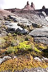 """High mountain vegetation dominated by, mosses, sedges and Ericaceae with the """"Donkeys Ears"""" behind. Towards the summit of Mt Kinabalu, Kinabalu Park, Sabah, Borneo."""
