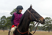 Janet Elliot and Flat Top at the Gallops, Springdale Race Course, November 2003.