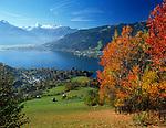 Oesterreich, Salzburger Land, Zell und Thumersbach am Zeller See im Herbst mit Kitzsteinhorn (3.203 m)   Austria, Salzburger Land, Zell and Thumersbach at Zeller Lake in autumn with Kitzsteinhorn Mountain (3.203 m)
