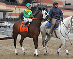 Smooth Bert post parade_Revolutionary (#2) with Javier Castellano splits horses to win the 133rd running of the Grade 3  Withers Stakes for 3-year olds, going 1 1/16 on the inner dirt, at Aqueduct Racetrack.  Trainer Todd Pletcher.  Owner Winstar Farms