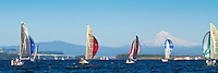 Five sailboats with colorful spinnaker sails out are racing on the Columbia River during summer with Mt Hood in the background during blue sky day in this panorama