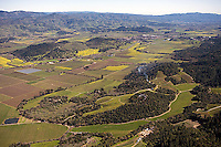 aerial photograph vineyards Napa Valley, California