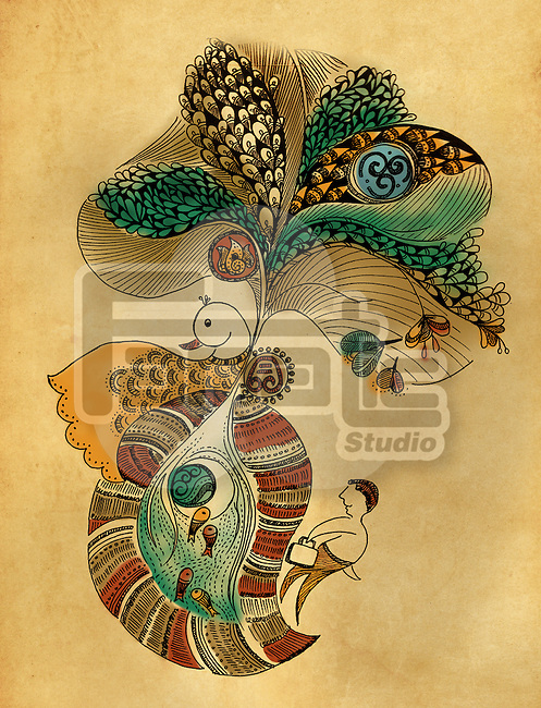 Illustration of peacock design against colored background