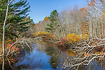 Fall foliage on the Pachaug River in Voluntown, Connecticut, USA