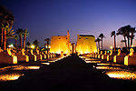EGY, Aegypten, Luxor: Sphinx-Allee im Luxor-Tempel bei Nacht | EGY, Egypt, Luxor: Sphinx-Alley at Luxor-Temple at night