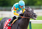 BALTIMORE, MD - MAY 21: Justin Squared #1, ridden by Martin A. Pedroza, leads the field at the top of the home stretch to win the the Chick Lang Stakes at Pimlico Race Course on May 21, 2016 in Baltimore, Maryland. (Photo by Douglas DeFelice/Eclipse Sportswire/Getty Images)