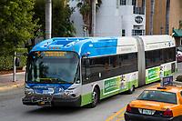 Miami, Florida.  Articulated City Bus, South Beach.