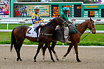 February 21, 2015: Fordubai with Robby Albarado up in the Mineshaft Handicap at the New Orleans Fairgrounds Risen Star Stakes Day. Steve Dalmado/ESW/CSM
