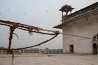 A frayed rope is seen between buildings inside the Red Fort in Delhi, India, on Tue., Dec. 11, 2018.