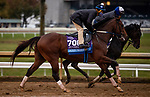 October 30, 2020: Jackie's Warrior, trained by trainer Steven M. Asmussen, exercises in preparation for the Breeders' Cup Juvenile at  Keeneland Racetrack in Lexington, Kentucky on October 30, 2020. Alex Evers/Eclipse Sportswire/Breeders Cup