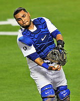 23 July 2011: Los Angeles Dodgers catcher Dioner Navarro in action against the Washington Nationals at Dodger Stadium in Los Angeles, California. The Dodgers rallied to defeat the Nationals 7-6 on a Rafael Furcal walk-off, RBI double in the bottom of the 9th inning. Mandatory Credit: Ed Wolfstein Photo