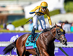 November 1, 2019: Four Wheel Drive, ridden by Irad Ortiz Jr., wins the Breeders' Cup Juvenile Turf Sprint on Breeders' Cup World Championship Friday at Santa Anita Park on November 1, 2019: in Arcadia, California. Michael McInally/Eclipse Sportswire/CSM