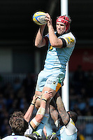 Christian Day of Northampton Saints wins the lineout during the Aviva Premiership match between Harlequins and Northampton Saints at the Twickenham Stoop on Saturday 4th May 2013 (Photo by Rob Munro)