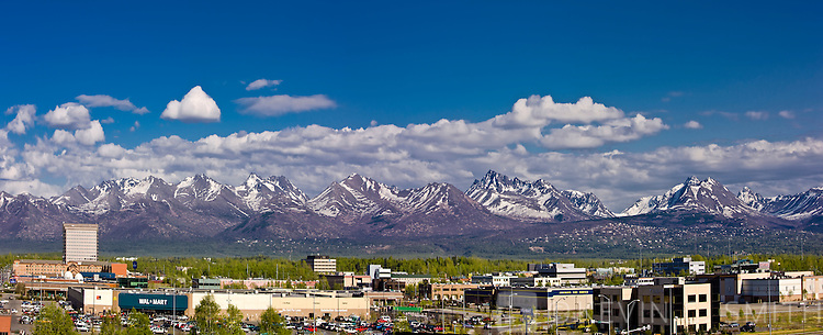 View of the office buildings that make up midtown Anchorage, Chugach mountains in the background, spring foliage, Anchorage, Southcentral Alaska, USA.