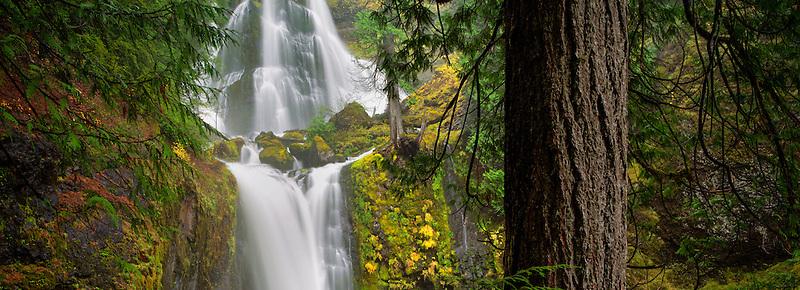 Falls Creek Falls, Washington.