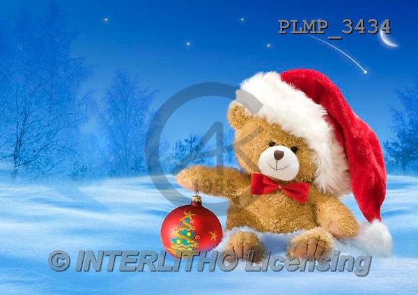 Marek, CHRISTMAS ANIMALS, WEIHNACHTEN TIERE, NAVIDAD ANIMALES, teddies, photos+++++,PLMP3434,#Xa# in snow,outsite,