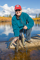Sport fishing catch of Arctic Grayling on the Kanuti river in interior Alaska.