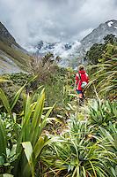 Tramper among alpine vegetation in upper Copland Valley, Westland National Park, West Coast, World Heritage Area, South Westland, New Zealand