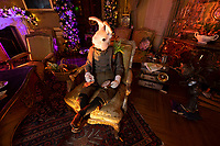 BNPS.co.uk (01202 558833)<br /> Pic: PhilYeomans/BNPS<br />  <br /> White Rabbit relaxes in the sitting room..<br /> <br /> An Alice in Wonderland spectacular takes over historic Blenheim Palace in Oxfordshire this Christmas ...<br /> <br /> Britains only non-royal Palace has been transformed into a sound and light fantasy vision of the famous Lewis Carol Victorian novel, complete with a real life Alice to show the visitors around.<br /> <br /> Sir Winston Churchill's birthplace has been decked out with its own rabbit-hole corridor, hall of mirrors and pool of tears.<br /> <br /> Its famous long library is the scene of the Mad Hatter's Tea Party, while White Rabbit can be found in the sitting room.