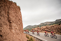 Team Sunweb escorting red jersey (overall leader) Nicolas Roche (IRE/Sunweb) through the stage<br />