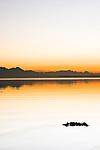 Deutschland, Bayern, Chiemgau: Sonnenuntergang am Chiemsee, im Hintergrund die Chiemgauer Alpen   Germany, Upper Bavaria, Chiemgau: sunset at Lake Chiemsee, at background the Chiemgau Alps