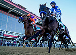 October 3, 2020: Thousand Words and Authentic show the way the first time past the stands in the Preakness Stakes during Preakness Stakes Day at Pimlico Race Course in Baltimore, Maryland. Scott Serio/Eclipse Sportswire/CSM