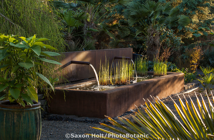 Water feature, rectangular pond stucco trough with foliage plants in afternoon light; Kuzma Garden. Photo MUST be credited as Design by Sean Hogan.
