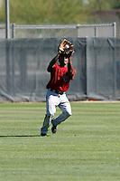 Ollie Linton - Arizona Diamondbacks - 2009 spring training.Photo by:  Bill Mitchell/Four Seam Images