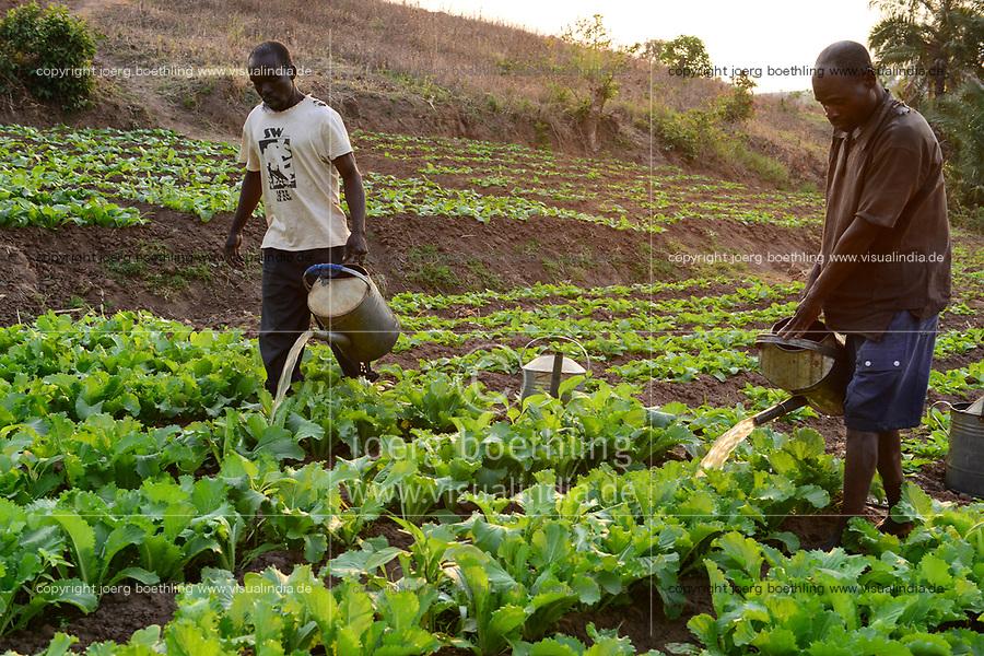 Malawi, Thyolo, NGO CARD Churches Action in Relief and Development, irrigation system for the village Samuti, farmer irrigate vegetable field with watering can  / Bewaesserungssystem im Dorf Samuti, Farmer bewaessern Gemuesefelder mit Giesskanne