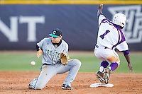 Connor Owings (6) of the Coastal Carolina Chanticleers waits for a late throw as Josh Greene (1) of the High Point Panthers steals second base at Willard Stadium on March 14, 2014 in High Point, North Carolina.  The Panthers defeated the Chanticleers 3-0.  (Brian Westerholt/Four Seam Images)