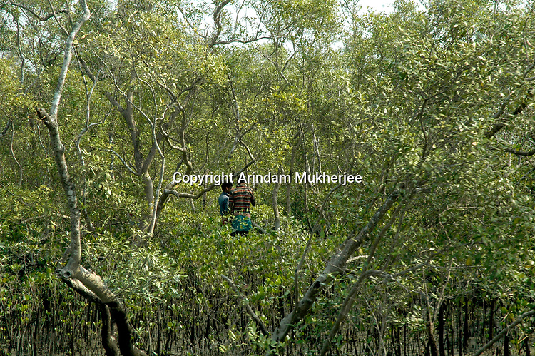 Local people inside the core area of the Sunderban tiger reserve. These are the places where tiger poplulation is high hence tiger attack is also higher. Sunderbans, West Bengal, India, Arindam Mukherjee.