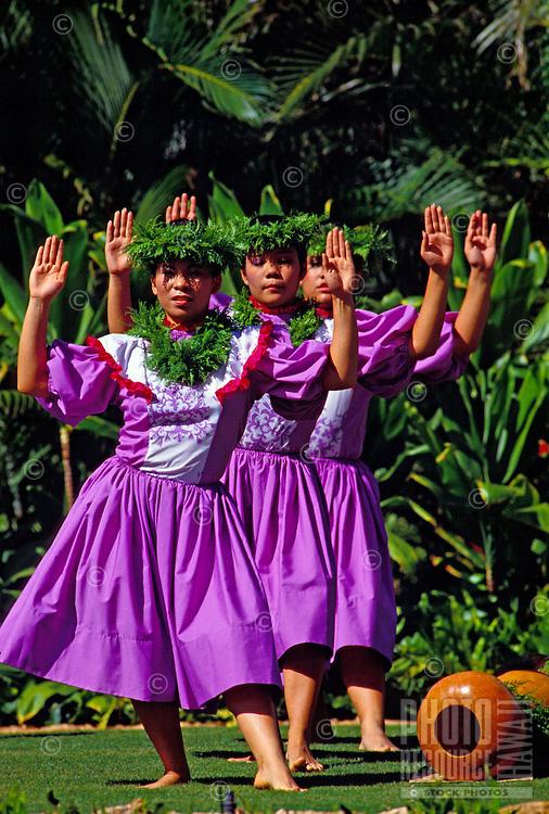 A line of female hula dancers wearing traditional dress dance with palms raised at Lanikuhonua on Oahu's leeward side.